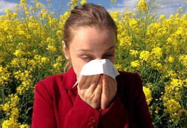 Winter Allergy Remedies
